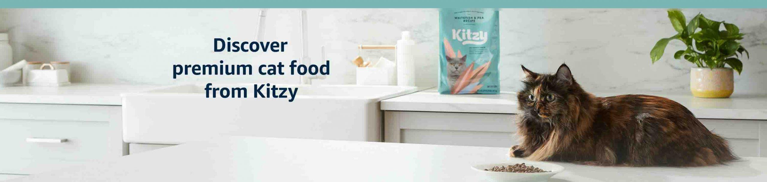 Amazon Brand – Kitzy Dry Cat Food